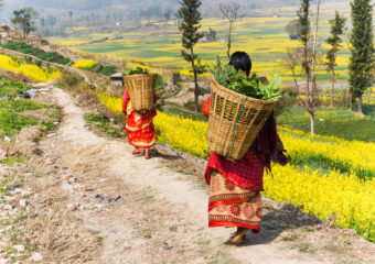 Pokhra - Tranquility in valley - rural life - Nepal
