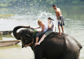 shower by elephant - activity in Chitwan National Park - Nepal